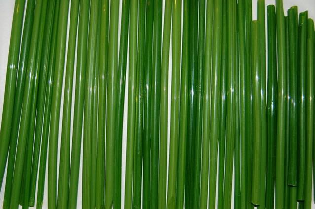 Name:  Devardi Frog green 013.jpg Views: 1125 Size:  41.4 KB
